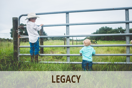 Legacy | Southwest Florida | Williams Farm, Immokalee