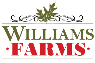 Williams Farms of Immokalee | Barn Weddings & Events | Southwest Florida
